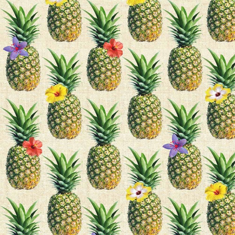 Coton imprimé ananas