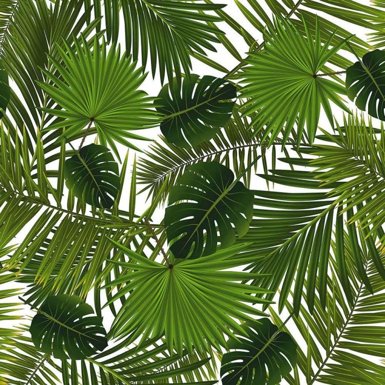 Coton imprimé feuilles tropicales